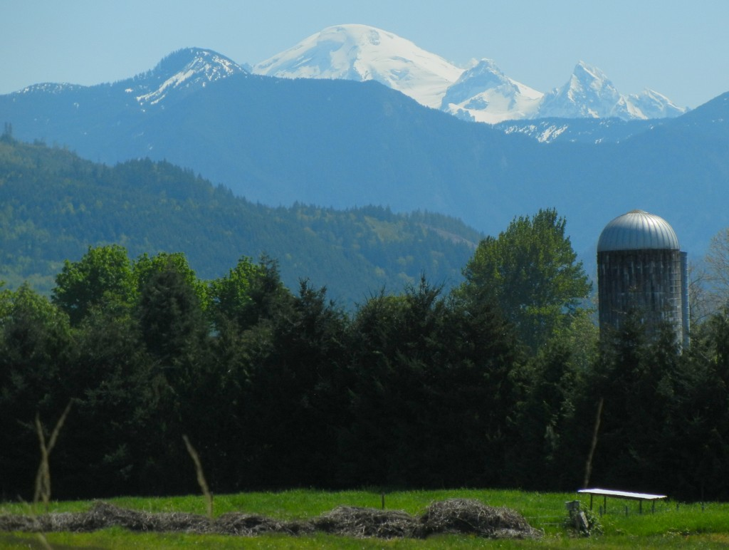 Mount Baker from the North.  The North Ridge is directly center. Photo: Zeb Blais